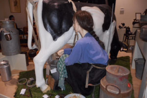 museum koeien melken